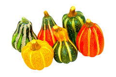 Pumpkin gourds isolated Stock Image