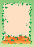 Pumpkin gradient frame Stock Images