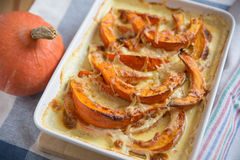 Pumpkin Gratin with cheese. And fresh herbs royalty free stock image