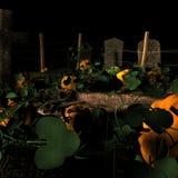 Pumpkin Graveyard. Graveyard being overrun by a pumpkin patch royalty free illustration
