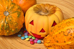 Pumpkin Greedy. The Pumpkin greedy for sweets Royalty Free Stock Photography