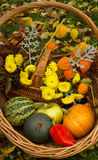 pumpkin and green Apple,red pepper and yellow flowers Royalty Free Stock Image