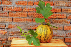 Pumpkin with a green stalk Royalty Free Stock Images