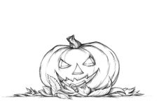 Pumpkin with grim face expression in autumn leaves Royalty Free Stock Photography