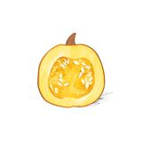 Pumpkin half cut sketch draw isolated over white Royalty Free Stock Image