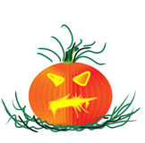 Pumpkin halloween. A halloween pumpkin with green stem and leaves Royalty Free Stock Photos