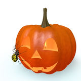 Pumpkin halloween Stock Images