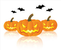 Pumpkin halloween Royalty Free Stock Photo