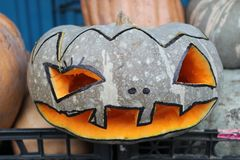 Halloween pumpkin design with copy space. Pumpkin for Halloween a camomile. Halloween — the modern holiday which is going back to traditions of ancient Celts Stock Photography
