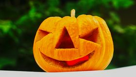 Pumpkin in the halloween day Stock Image