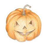 Pumpkin for Halloween. Stock Images