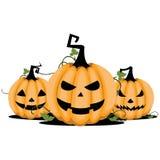Pumpkin Halloween Stock Images