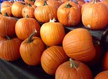 Pumpkin for Halloween Stock Photo