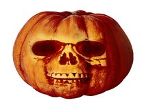Pumpkin for halloween isolated on white background royalty free stock image