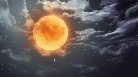 Pumpkin Halloween moon and dark sky. Pumpkin orange color of the Halloween moon stock video footage