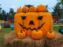 The pumpkin Stock Photo