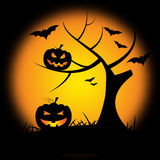 Pumpkin Halloween Represents Trick Or Treat And Environment Stock Images