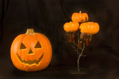 Pumpkin and Halloween Tree. Isolated on a Black Background royalty free stock images