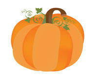 Pumpkin for Halloween. On white background Stock Image