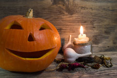 Pumpkin for Halloween Stock Photography