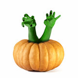 Zombie monster Pumpkin halloween hands Royalty Free Stock Image