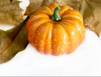 Pumpkin hallowen. Surrounded by dry autumn leaves Royalty Free Stock Images