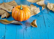 Pumpkin hallowen. Surrounded by dry autumn leaves Stock Photo