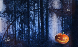 Pumpkin on haloween in the Gothic style at forest. Stock Images