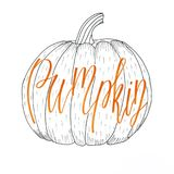 `Pumpkin` hand lettering orange inscription in halloween vibe put in a pumpkin doodle drawing royalty free illustration
