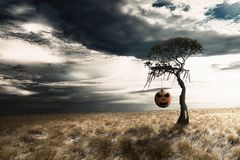 Pumpkin hanging on the dead tree in grassland royalty free stock photography
