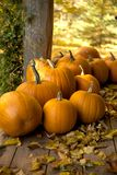 Pumpkin harvest on fall day. Pumpkins just harvested sitting on wood deck on a fall day royalty free stock photos