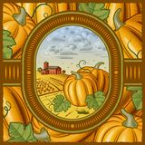 Pumpkin harvest Royalty Free Stock Photos
