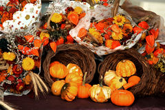Pumpkin Harvest Arrangement Stock Images