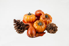 Pumpkin Harvest. A fall pumpkin harvest against a white background Stock Photography