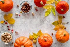 Pumpkin harvest. Pumpkins near nuts and autumn leaves on grey background top view copyspace Stock Photography