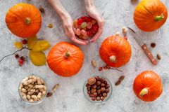 Pumpkin harvest. Pumpkins near nuts and autumn leaves on grey background top view Royalty Free Stock Photos