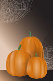 Pumpkin harvest Stock Photos