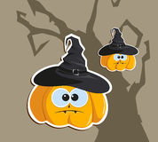 Pumpkin in the hat Stock Images