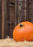 Pumpkin on hay Stock Photos