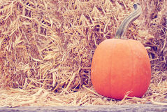 Pumpkin on hay bale Stock Photo