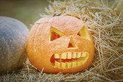 Pumpkin on a Hay. Carved Pumpkin for Celebration of Halloween on a Hay Stock Photography