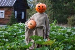 Pumpkin head deamon horror Stock Photos