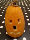 Pumpkin head Royalty Free Stock Photos
