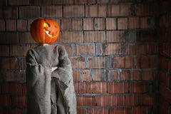 Pumpkin head monster horror indoor Royalty Free Stock Photo