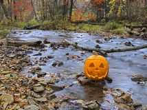Pumpkin head by the river Royalty Free Stock Photos
