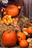 Pumpkin heads and props on wooden background Stock Photos