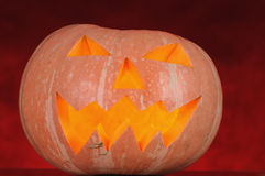 Pumpkin helloween Stock Image