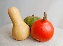 Pumpkin hokkaido and butternut squash Stock Images