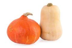 Pumpkin hokkaido and butternut Royalty Free Stock Image