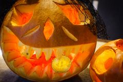 Pumpkin is holding a bitcoin in the teeth. At Halloween Stock Images